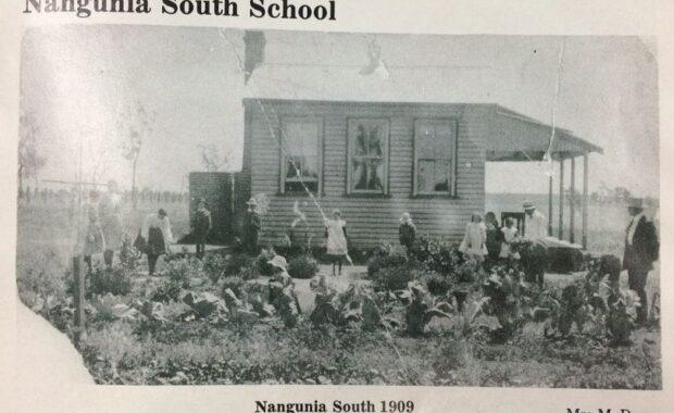 Nangunia South School